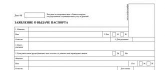 Заявление на загранпаспорт старого образца